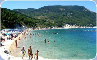 Informazioni storiche della Provincia di Ancona